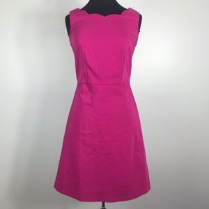 The Limited Magenta Scalloped A Line Dress 2 Tall